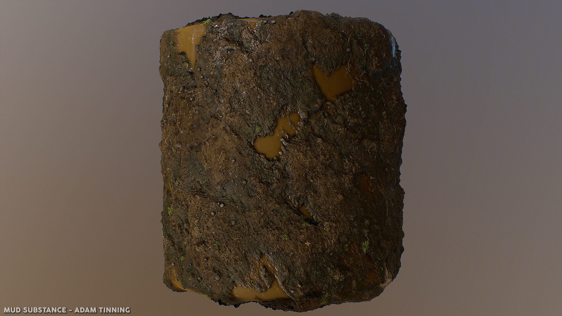Adam tinning mud render 04