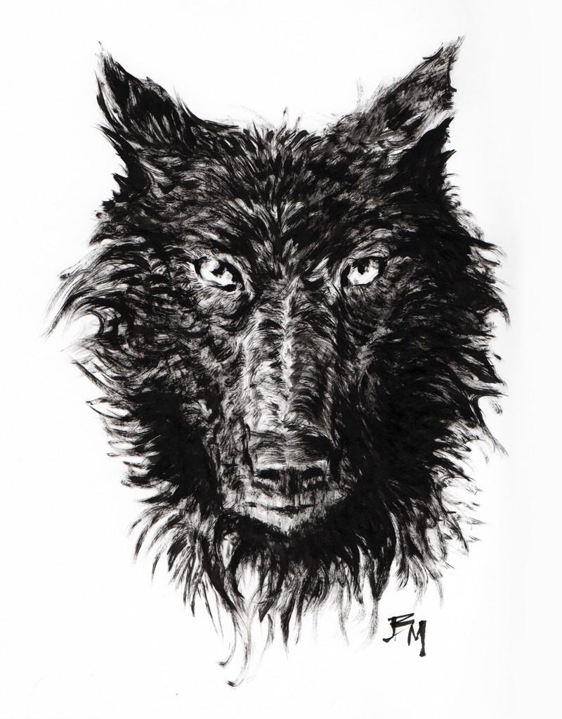 Bill melvin wolf bk2