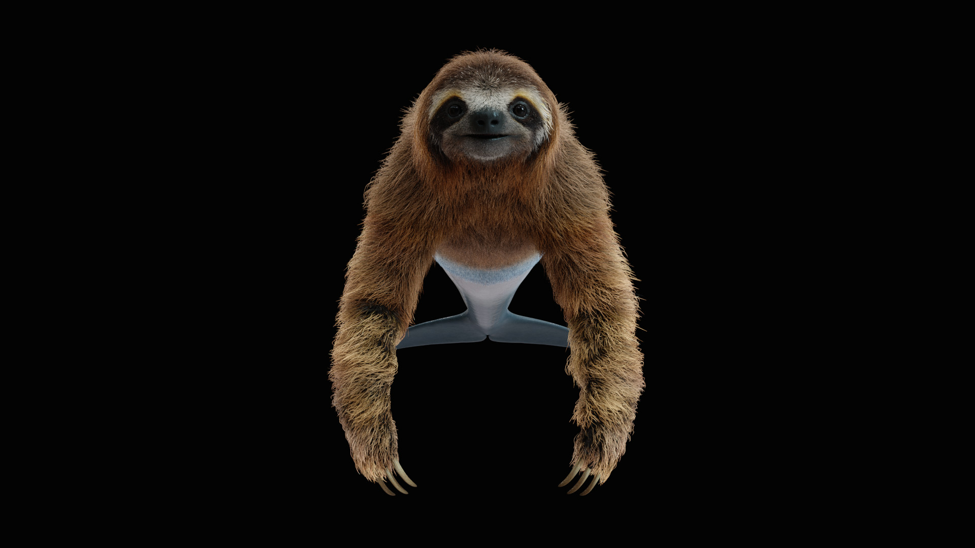 Clement granjon sloth front
