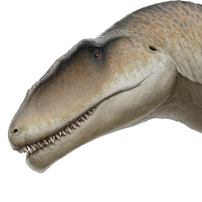 Fred wierum carcharodontosaurus3