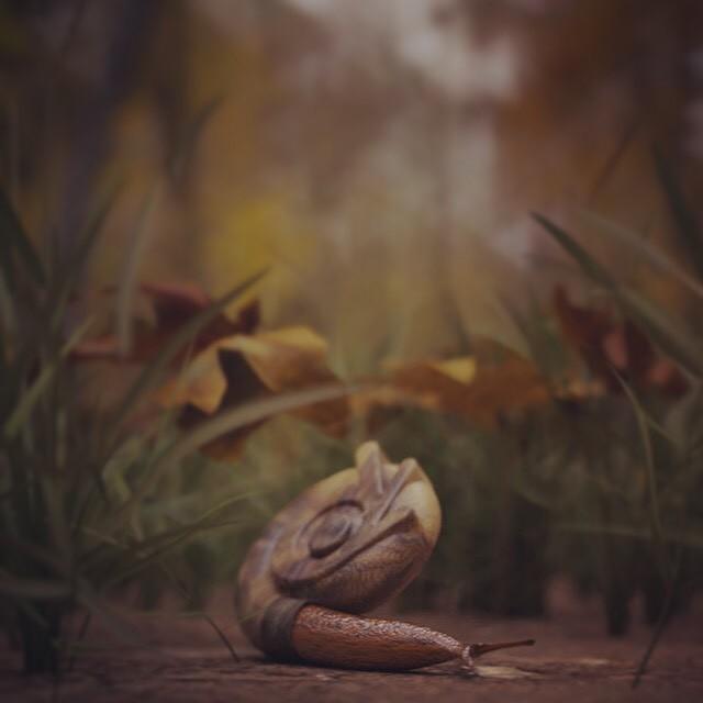 Brian azevedo snail forest insta