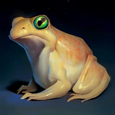 Ryan metcalf frog 01