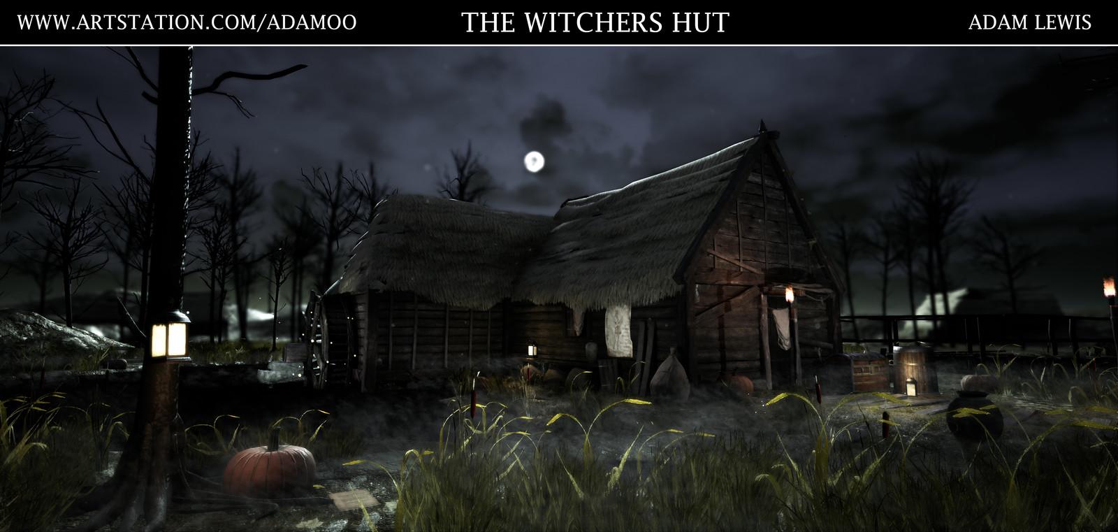 Witcher 3 - Swamp Hut