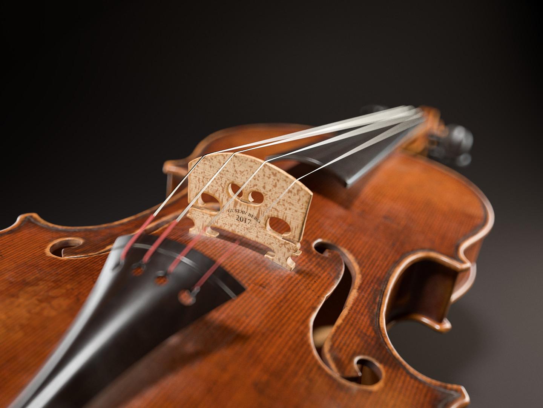 Gustav berg pedersen violinstudio close01