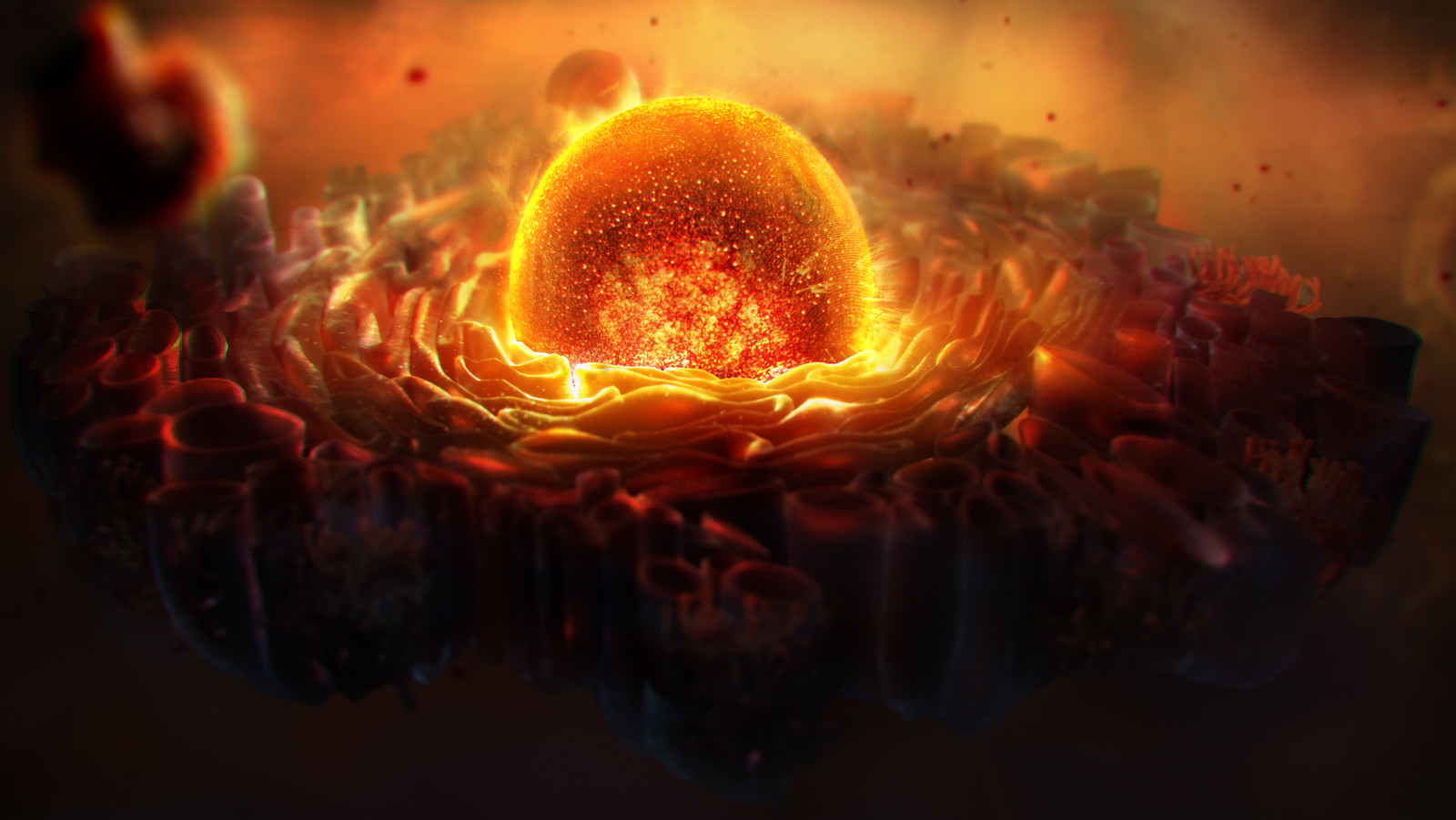 darker version of nucleus