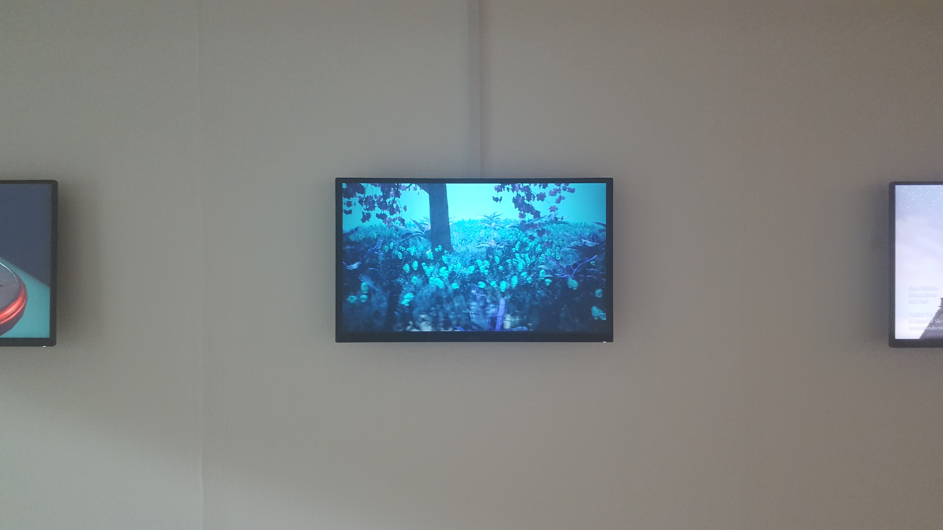 Work on display at the Degree Show