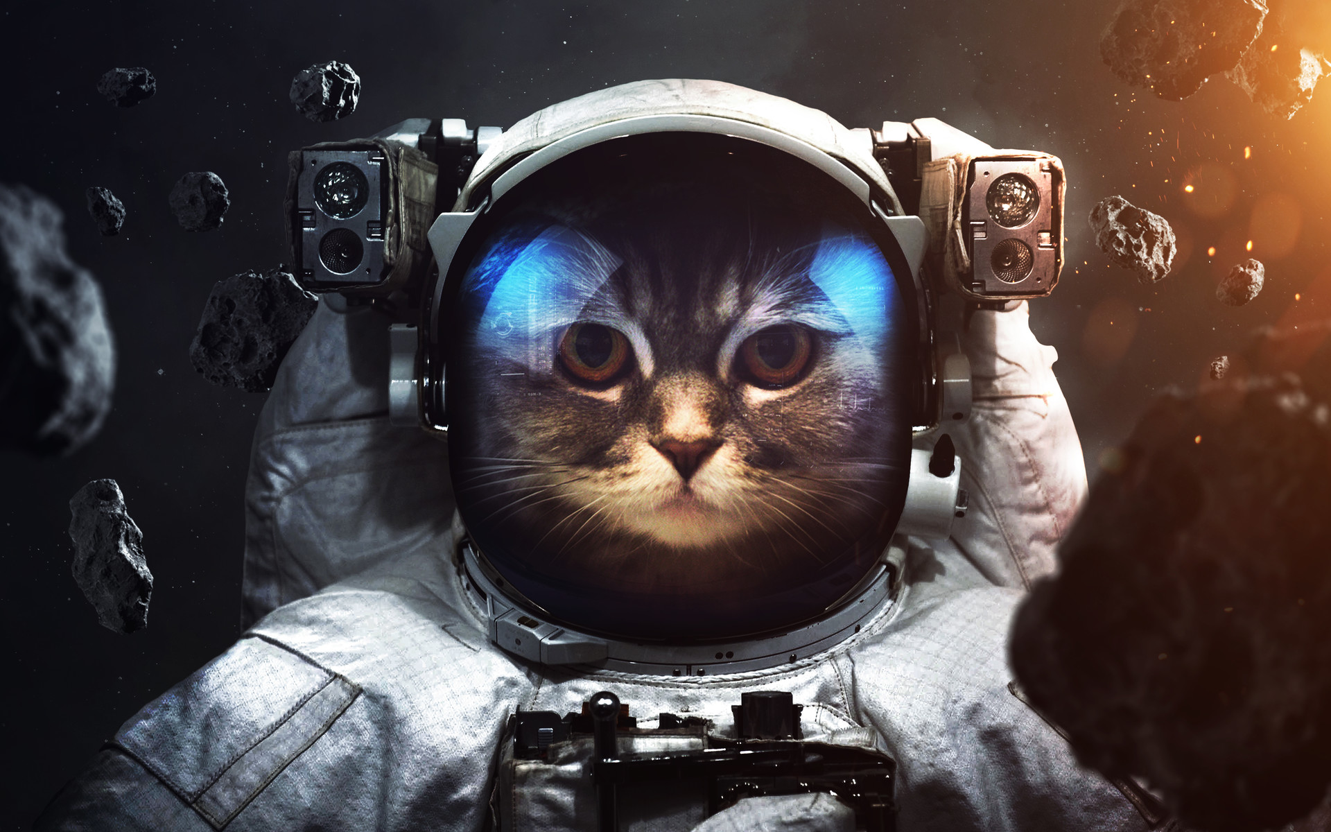 animals in space nasa - HD 1920×1200
