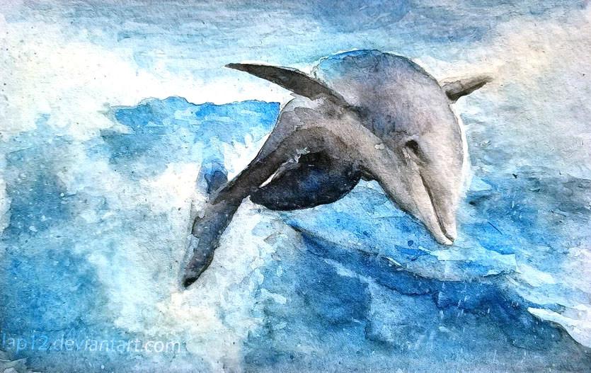 Ines robin wat dolphin