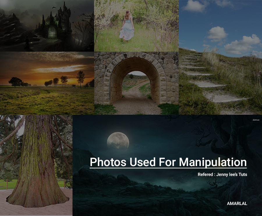 Photos Used For Manipulating Fantasy World