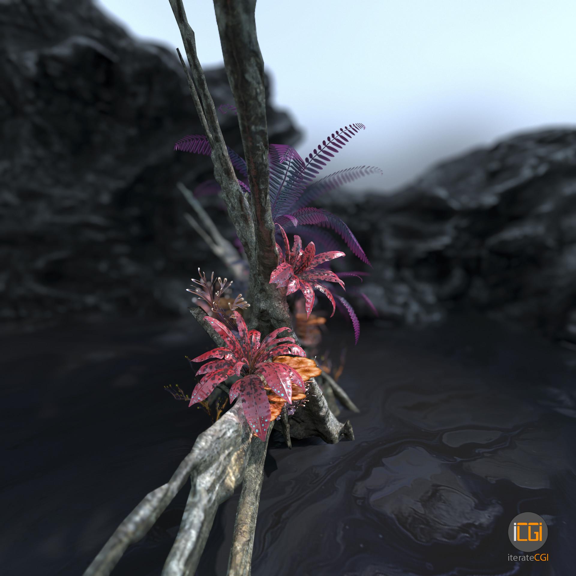 Johan de leenheer alien plant collection11