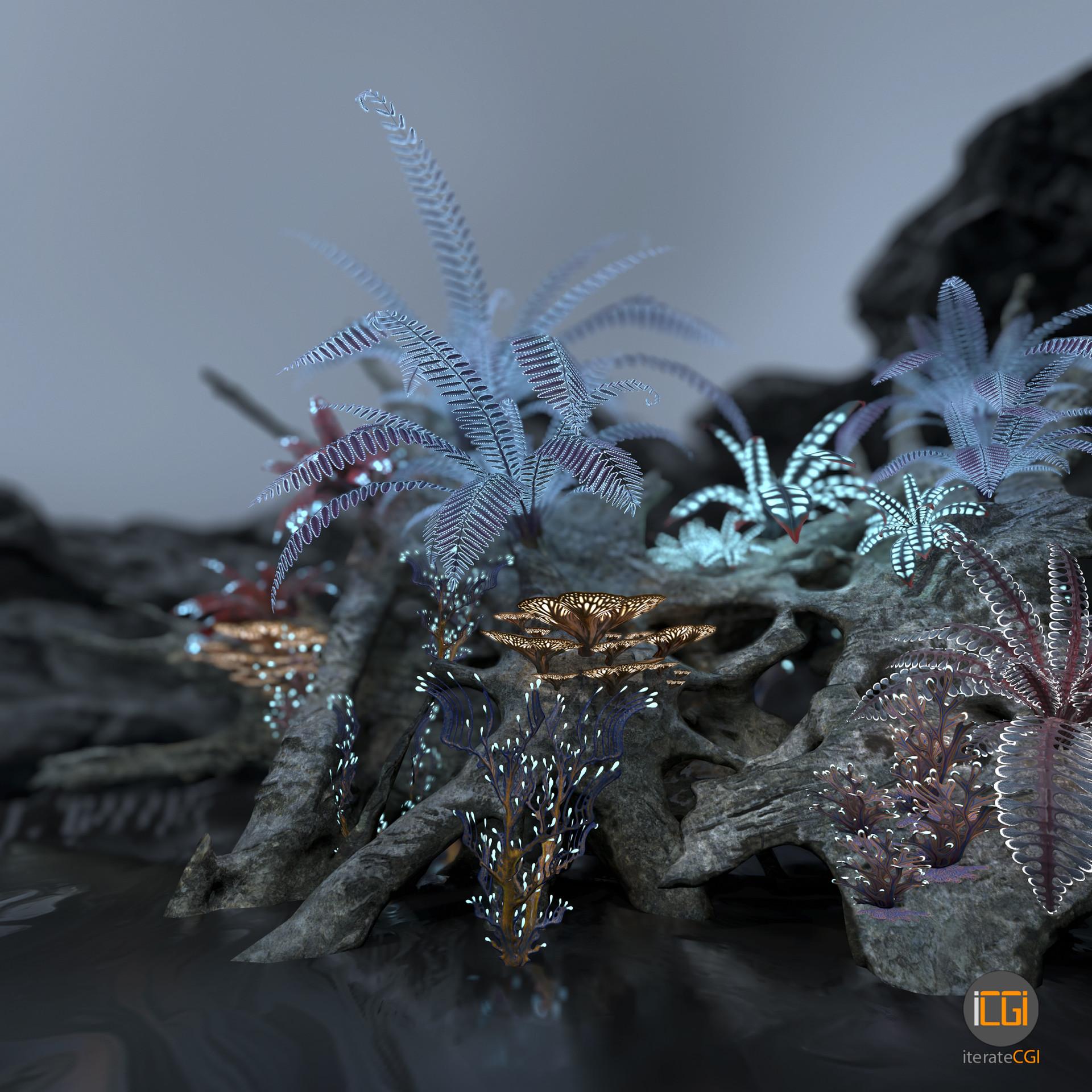 Johan de leenheer alien plant collection46
