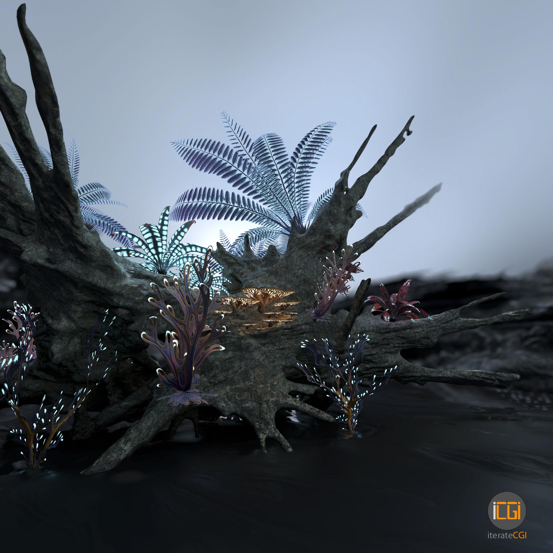 Johan de leenheer alien plant collection47