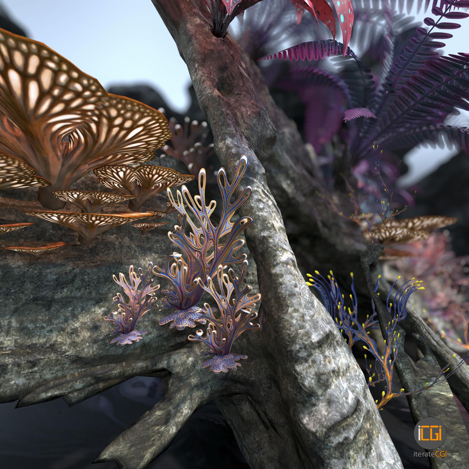 Johan de leenheer alien plant collection18