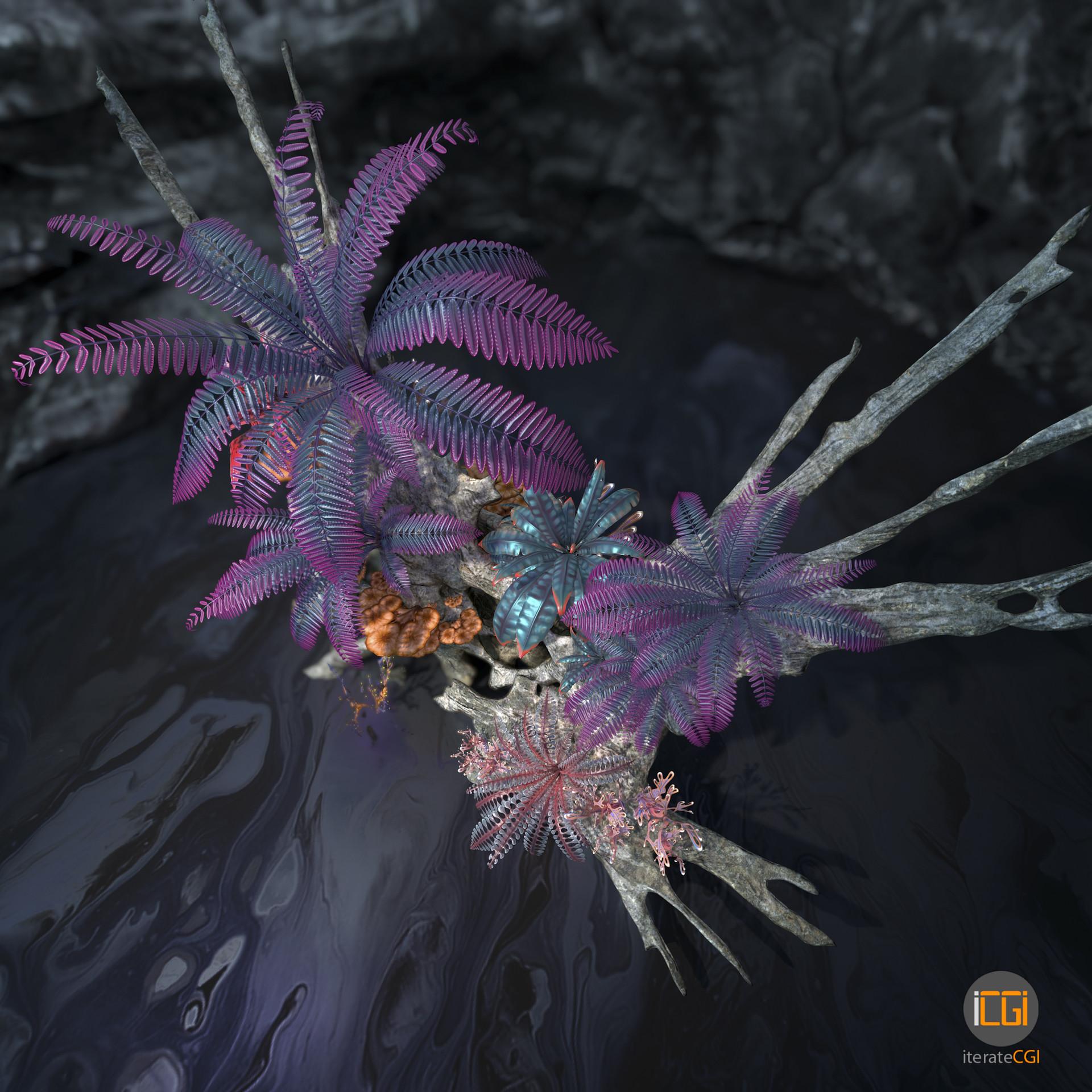 Johan de leenheer alien plant collection27