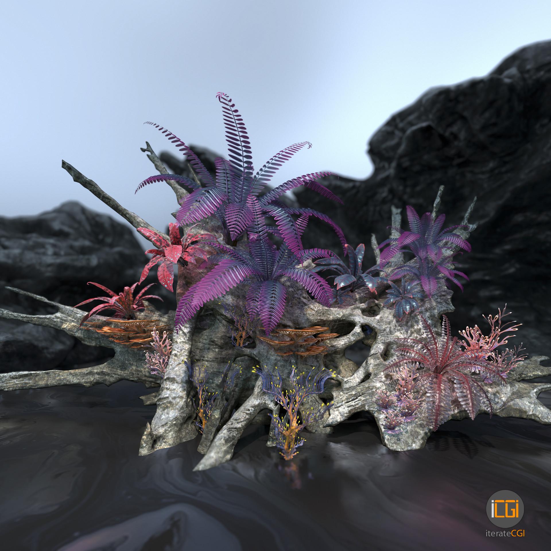 Johan de leenheer alien plant collection1