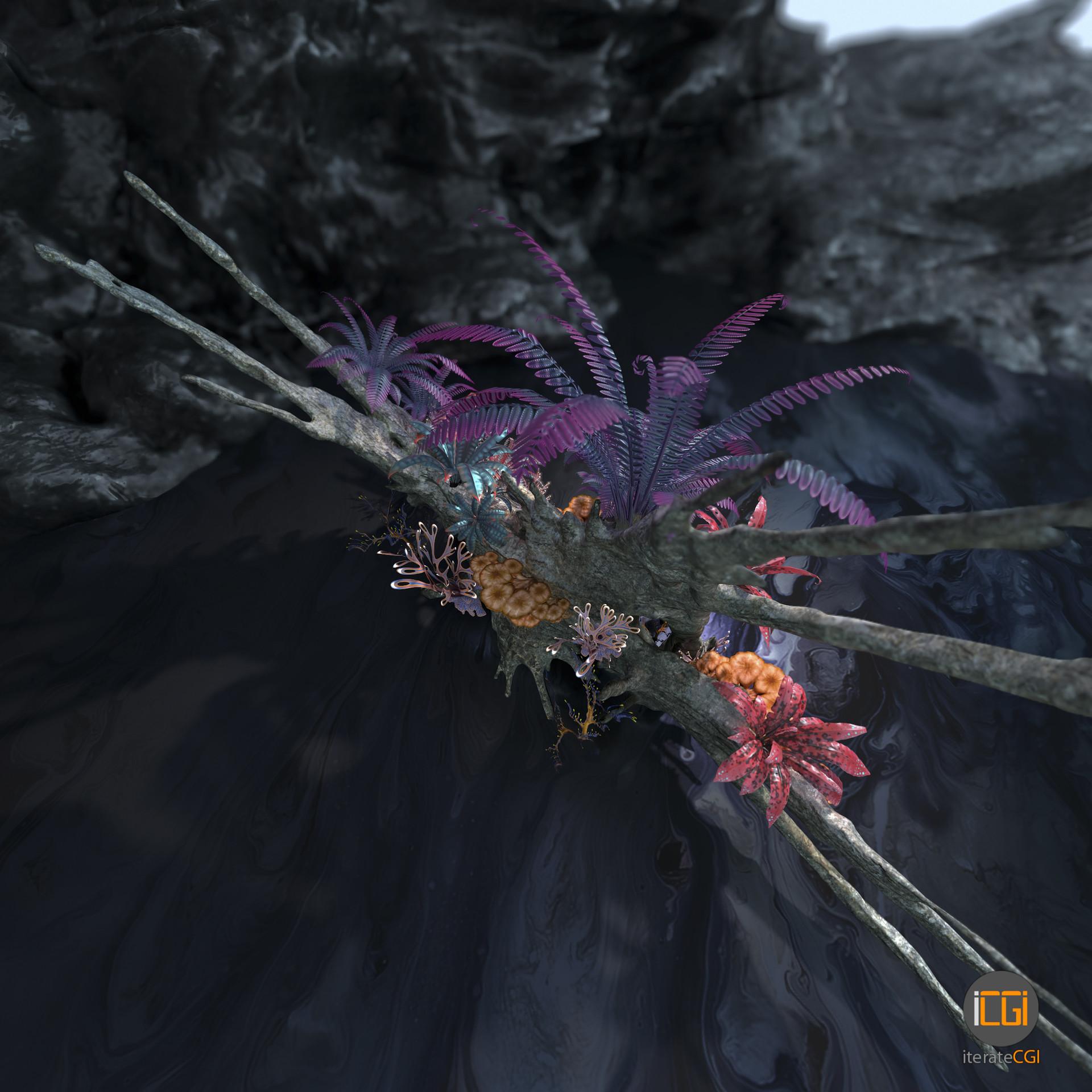 Johan de leenheer alien plant collection28