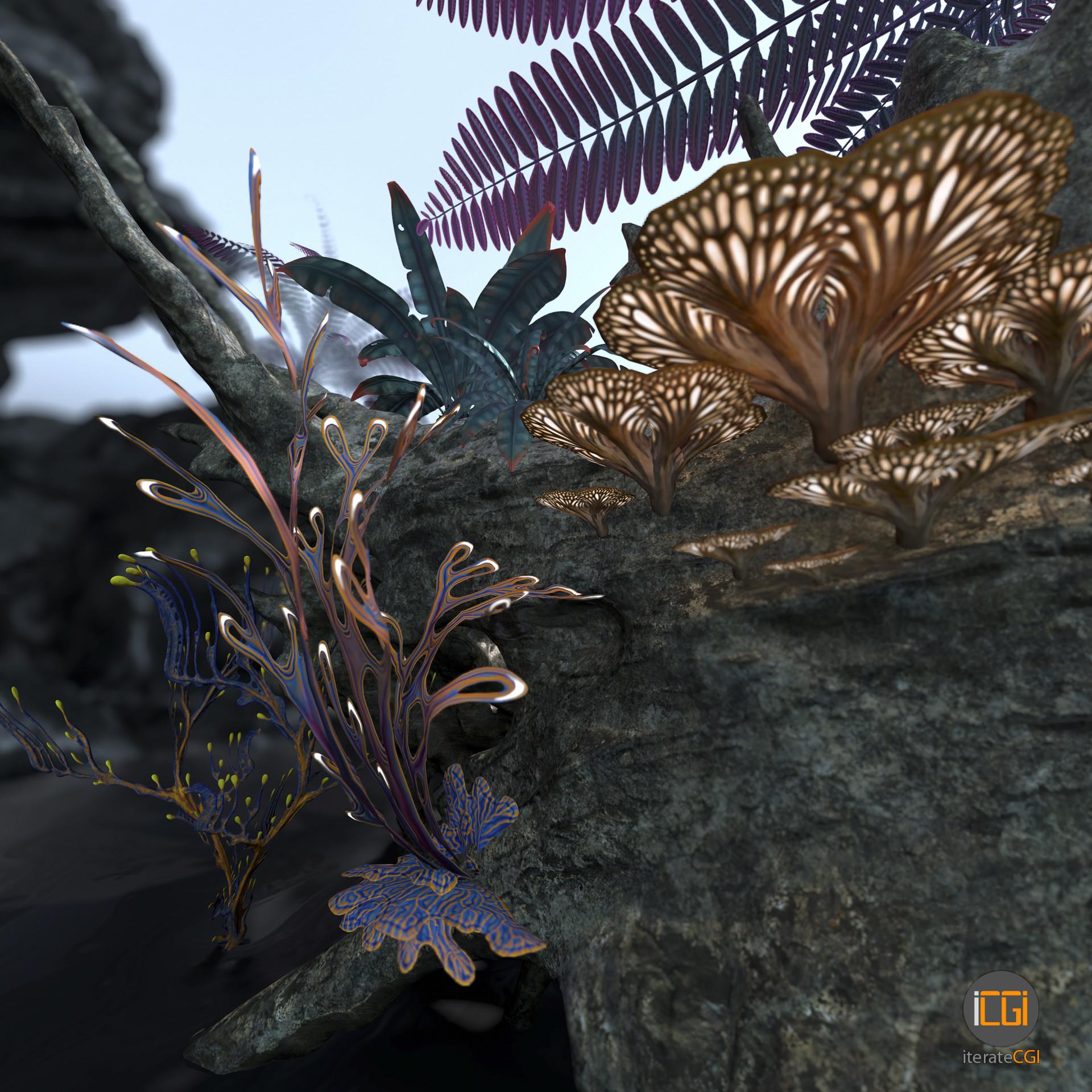 Johan de leenheer alien plant collection33