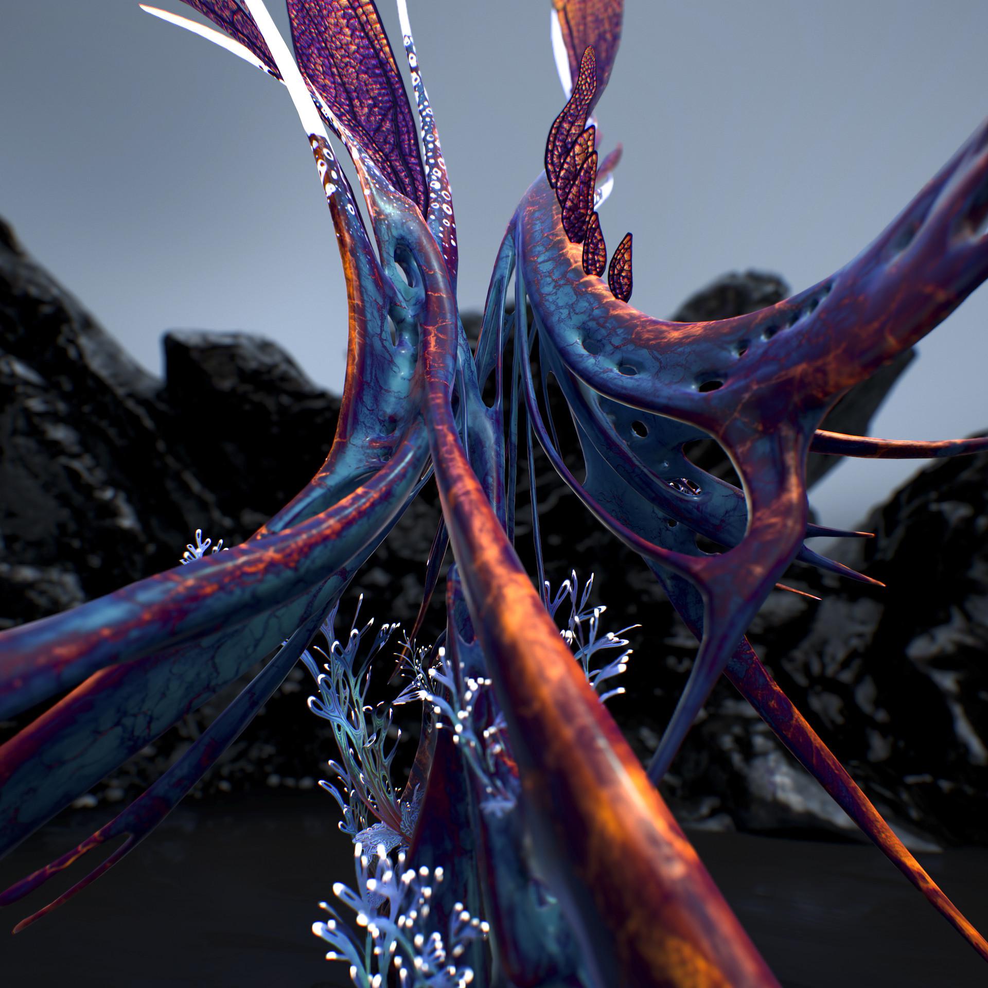 Johan de leenheer alien fern misota spletinus33