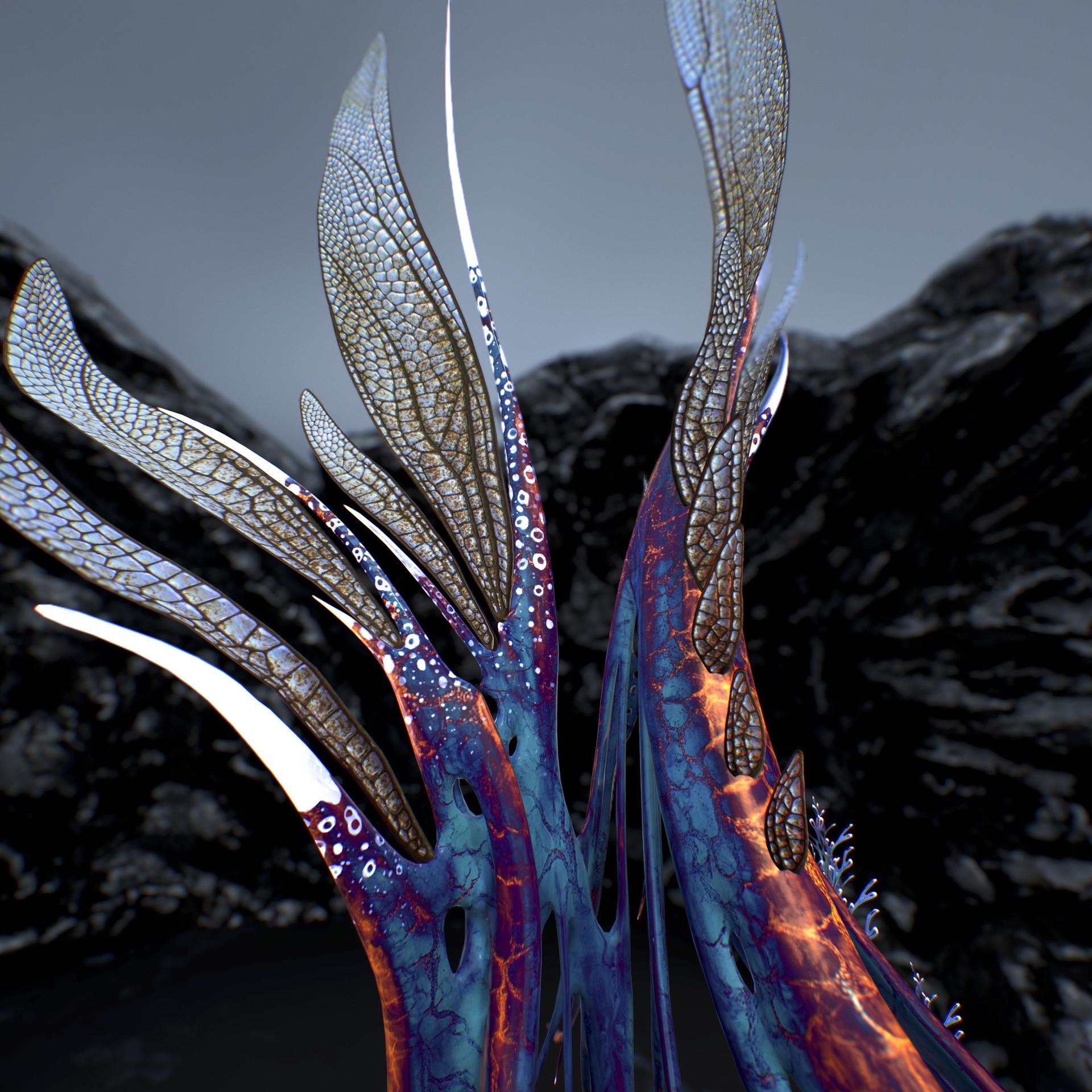 Johan de leenheer alien fern misota spletinus37