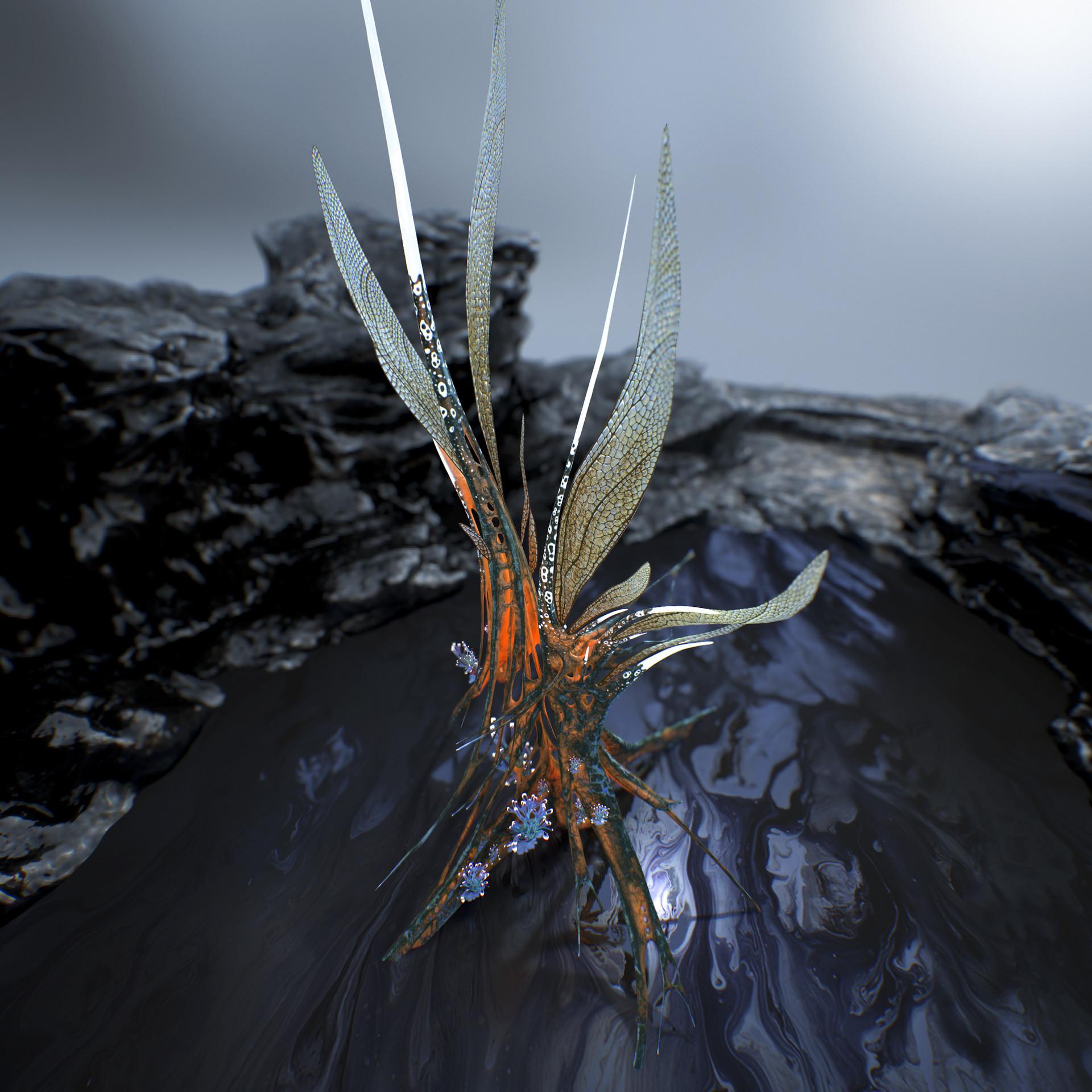 Johan de leenheer alien fern misota spletinus39