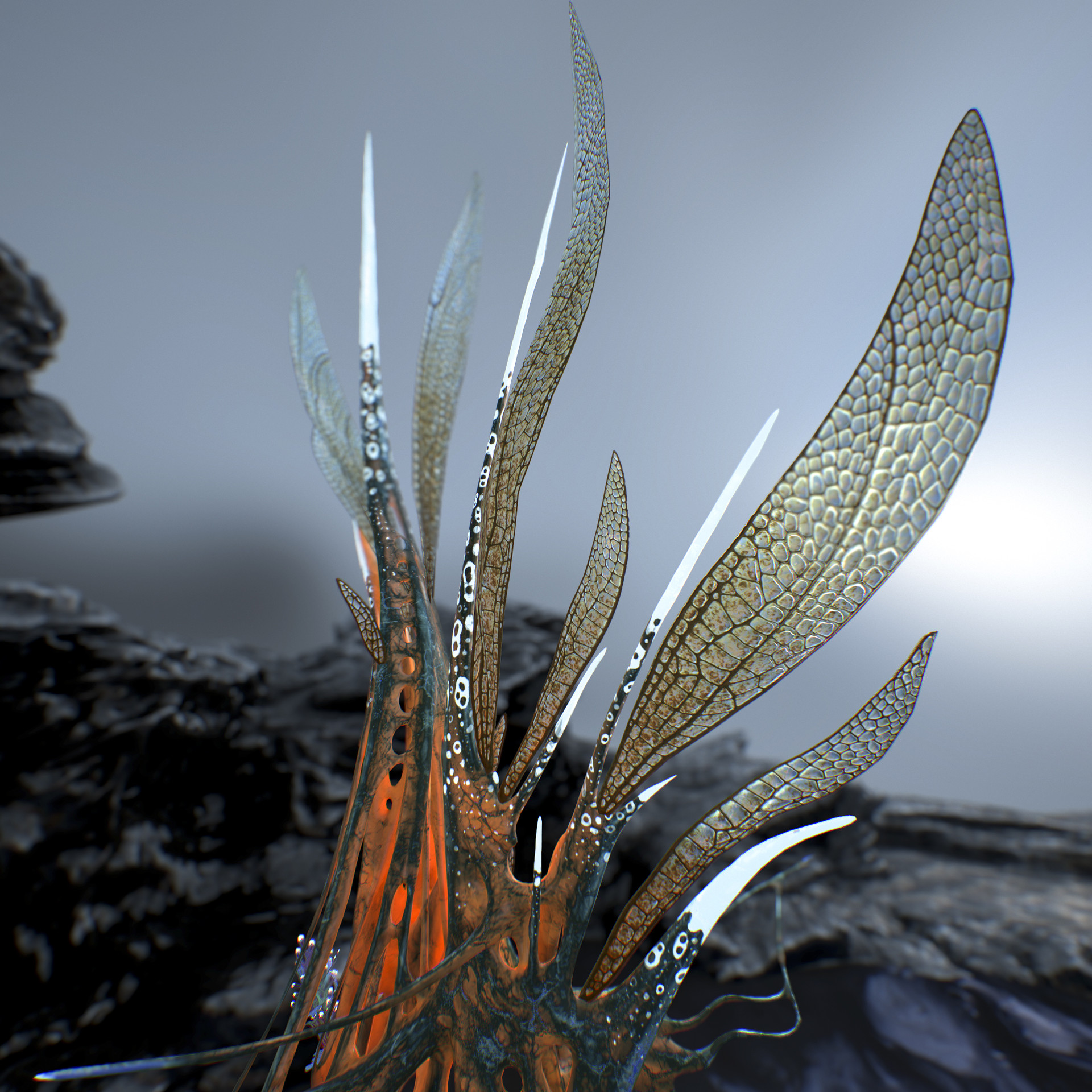 Johan de leenheer alien fern misota spletinus42