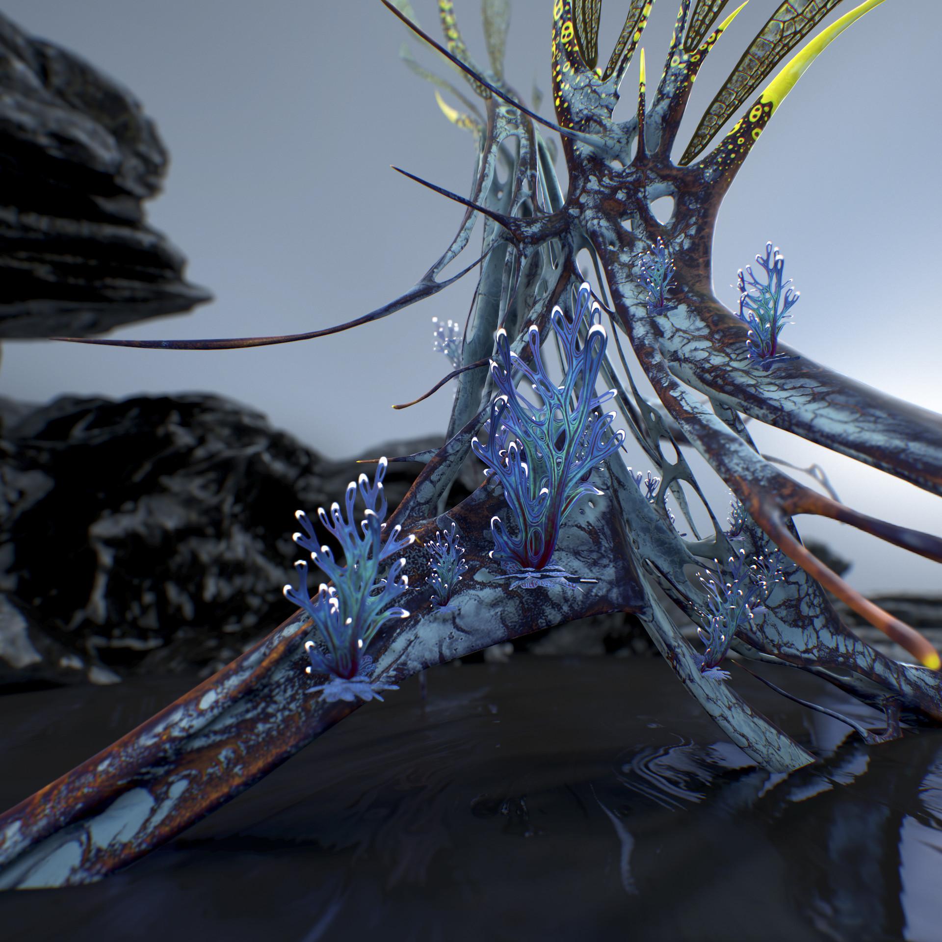 Johan de leenheer alien fern misota spletinus14