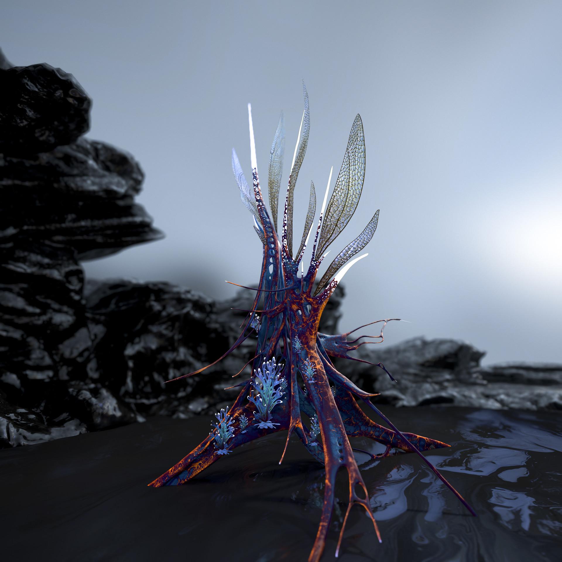 Johan de leenheer alien fern misota spletinus2