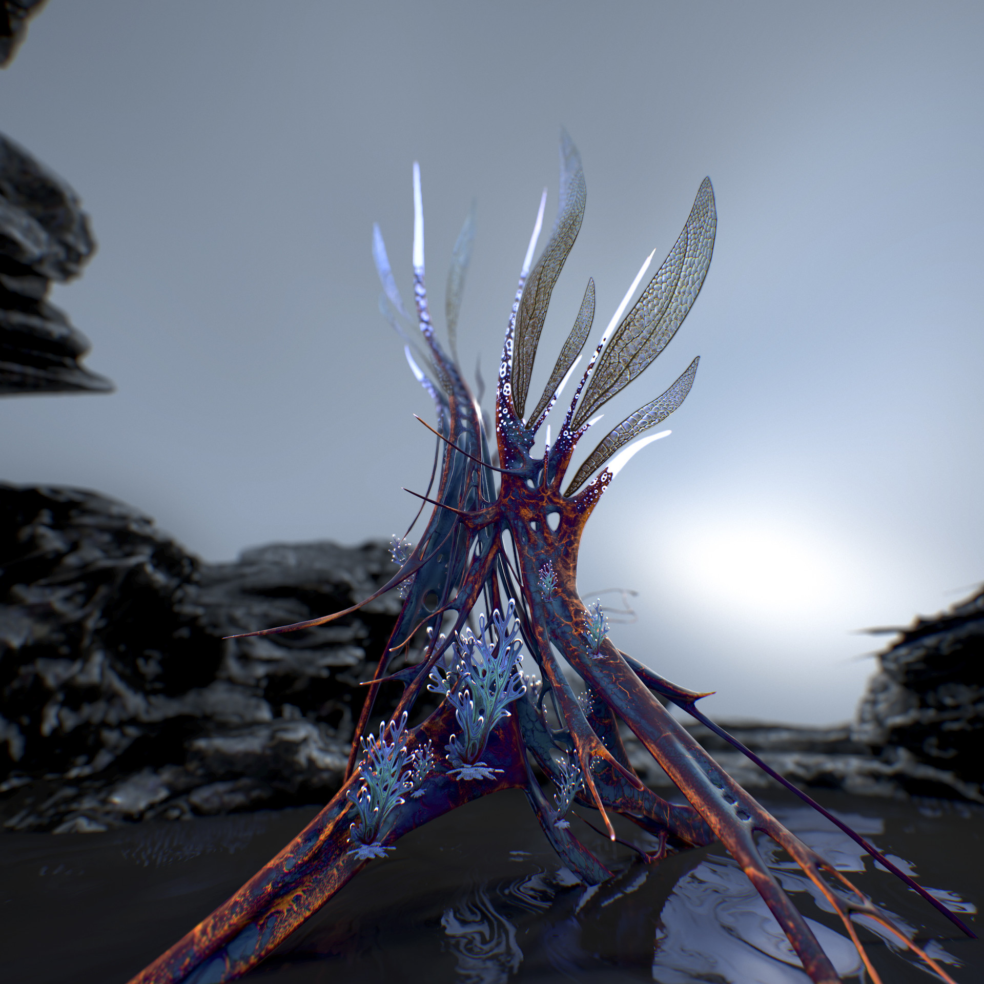 Johan de leenheer alien fern misota spletinus6