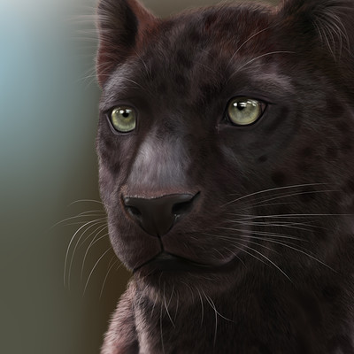 Etskuni art black jaguar