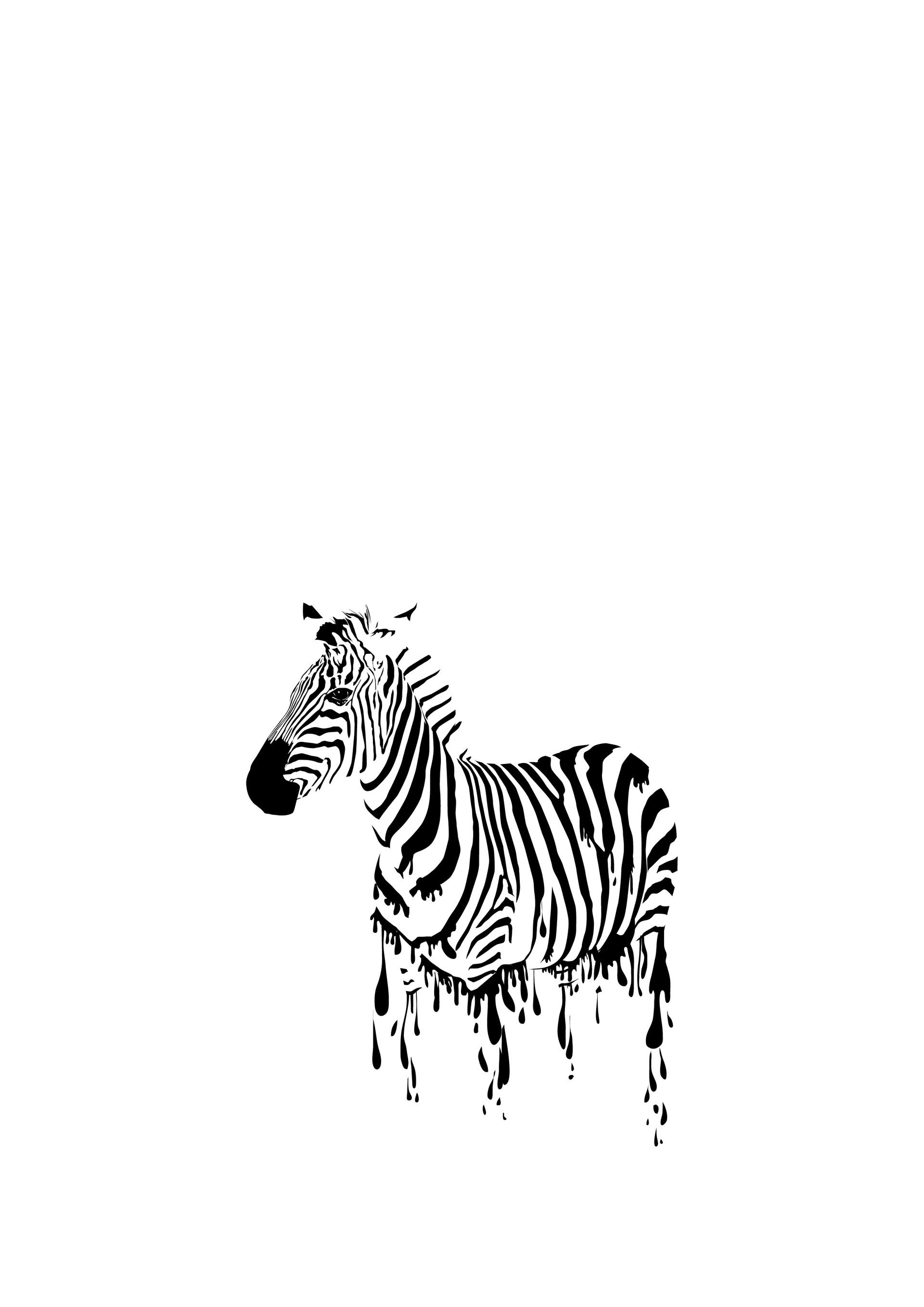 Rajesh sawant zebra global warming 02