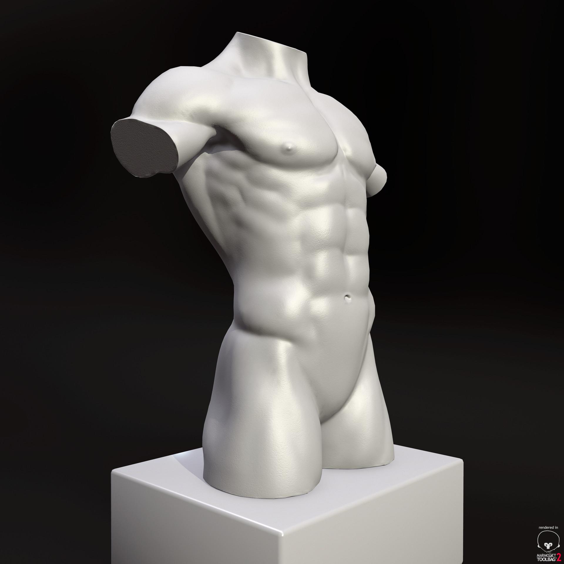 Marc virgili torso 10