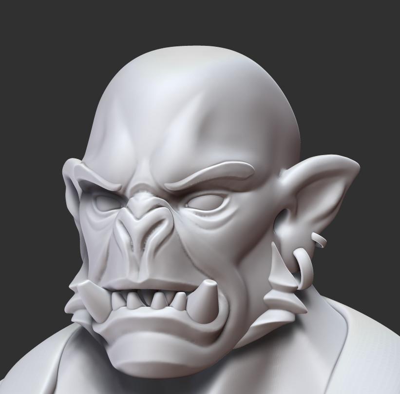 Head Closeup