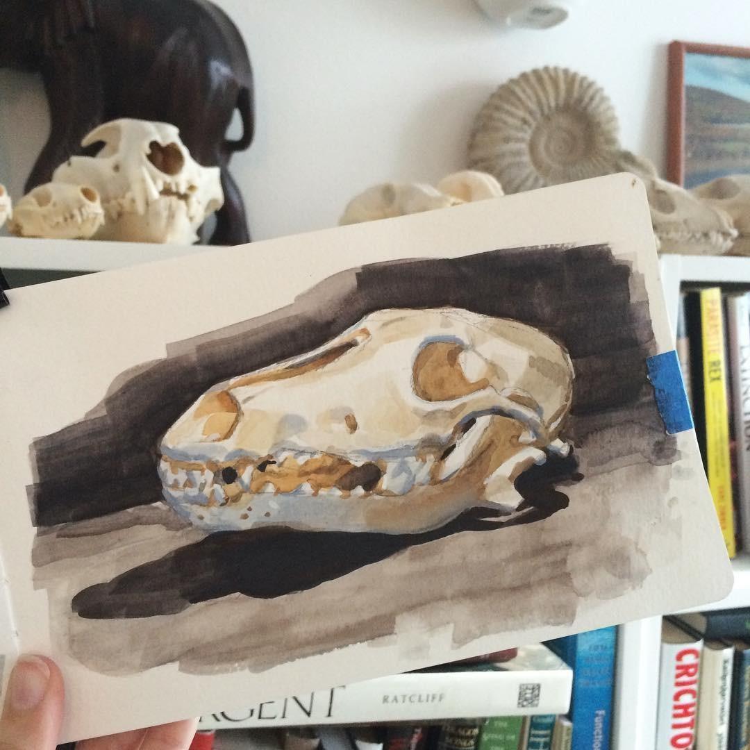 Sketches & Studies 19