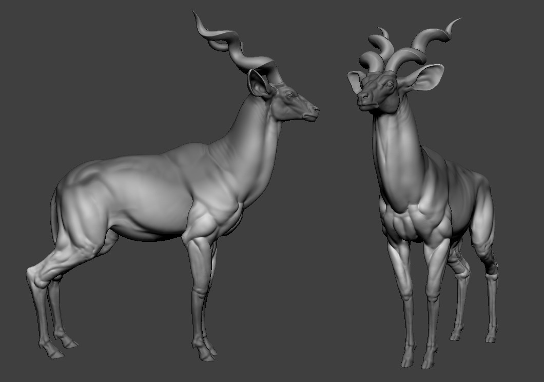 Then we pick our breed (Kudu) and, at this stage, we continue to focus on secondary forms, making sure we focus on readability and recognizability.