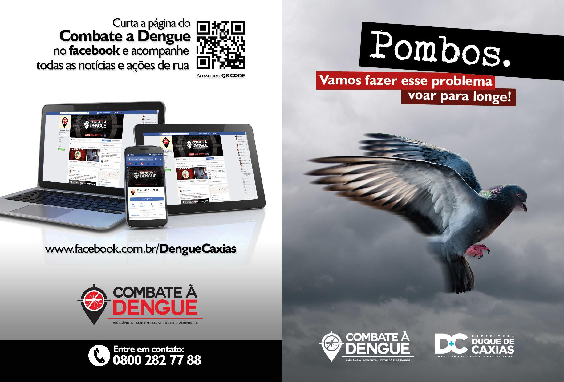 Leandro calazans folheto pombo 01