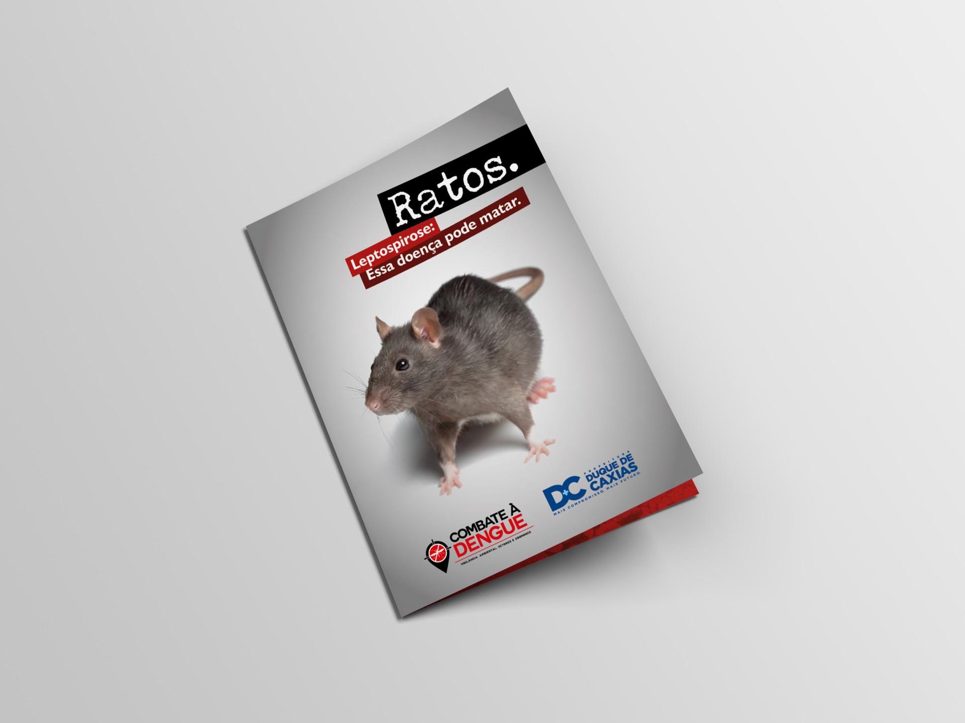 Leandro calazans folder rato