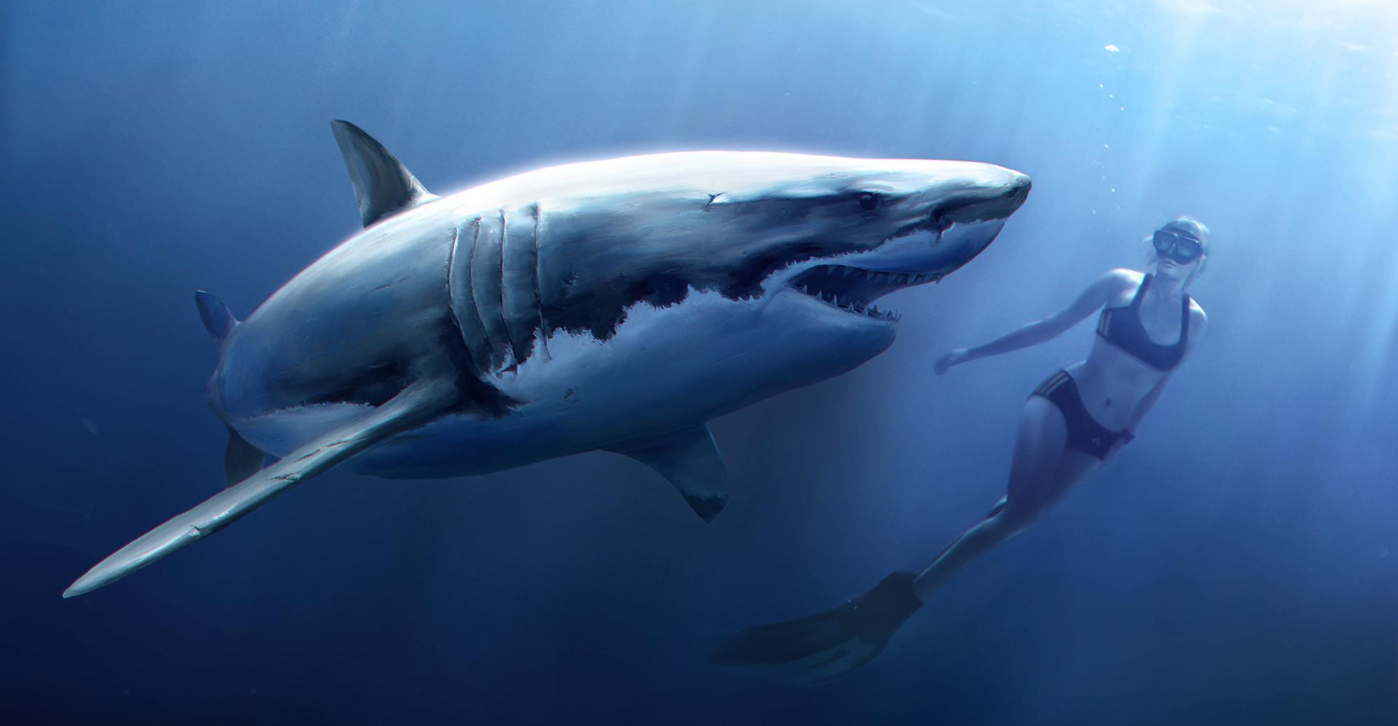 White Shark with Apnoe Diver