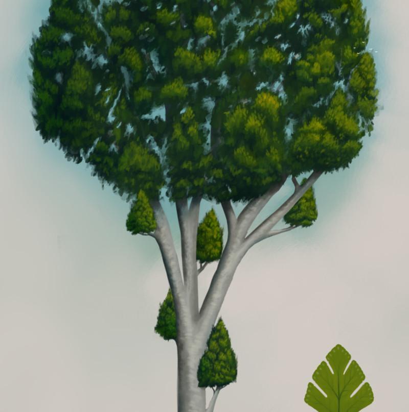 Fantasy tree concept