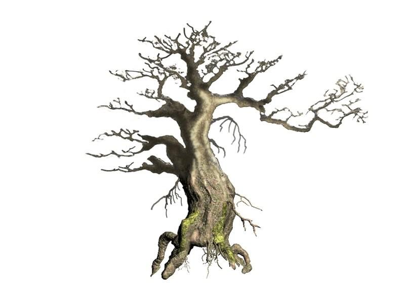 Ben harrison mrk tree