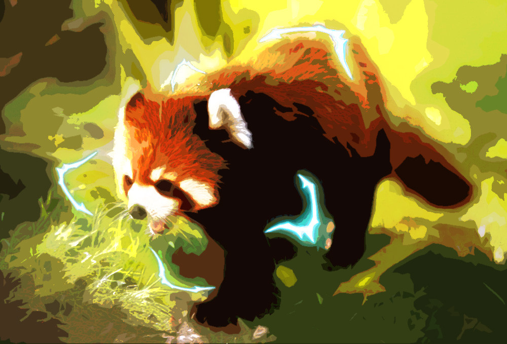 Rustic orcullo red panda2