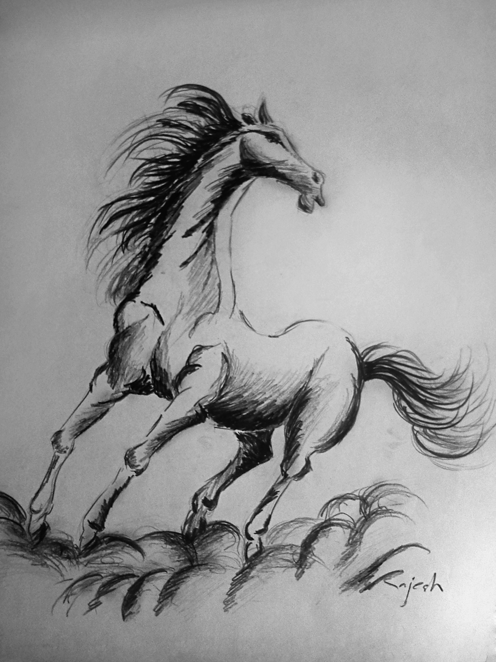Rajesh r sawant horse
