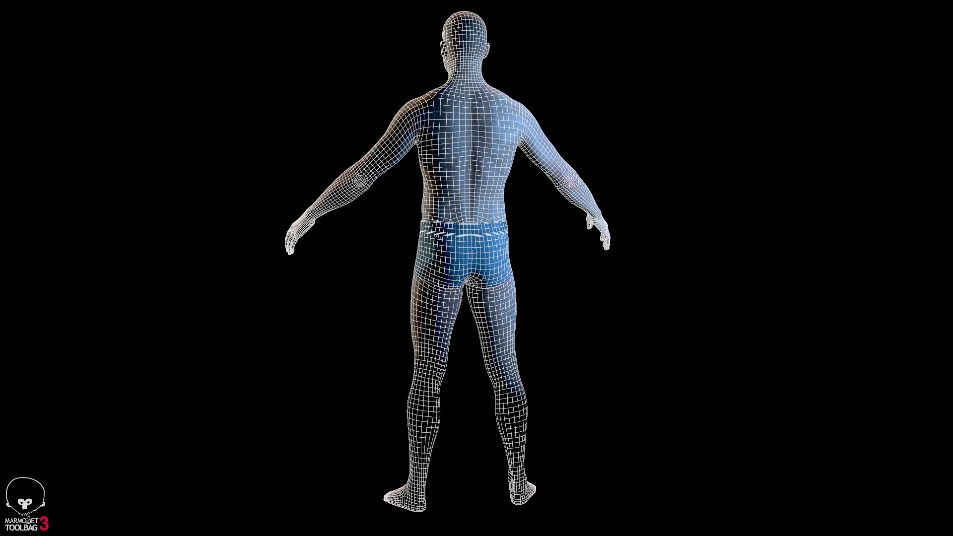 Alex lashko averagemalebody by alexlashko wireframe 04