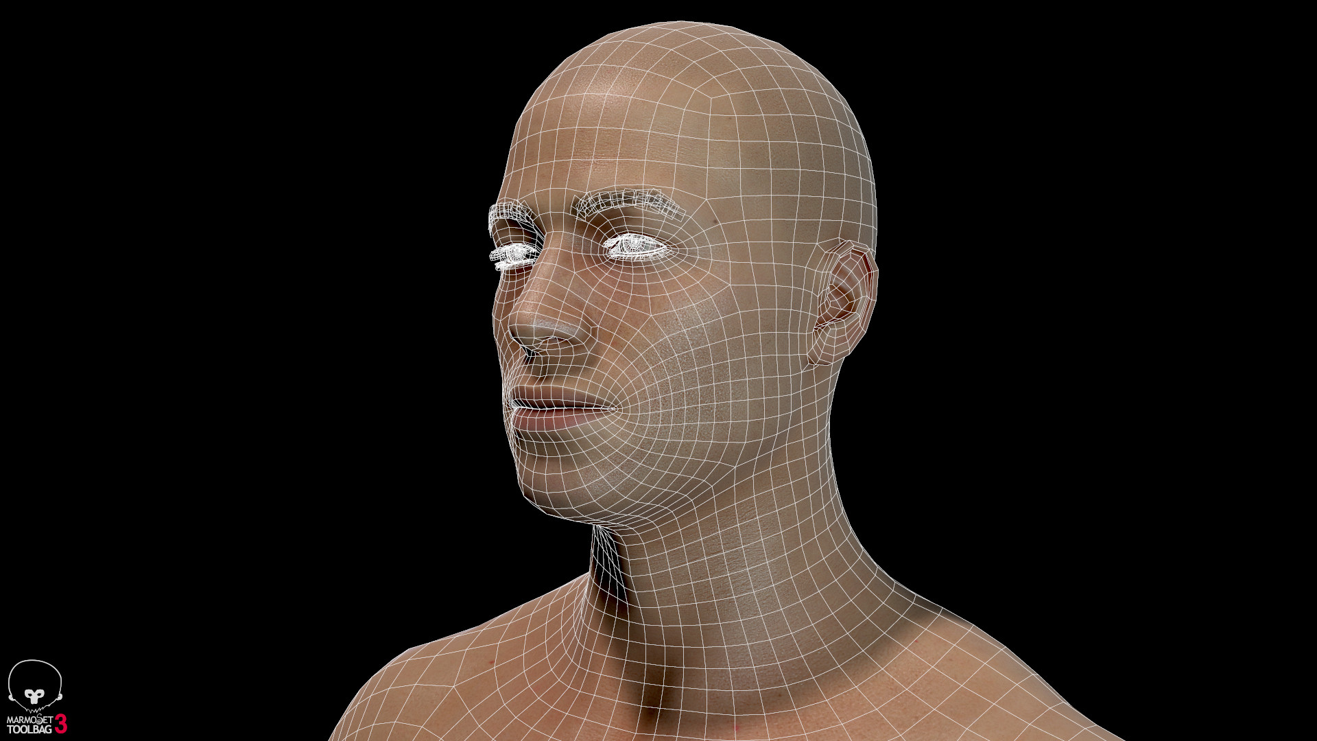 Alex lashko averagemalebody by alexlashko wireframe 07