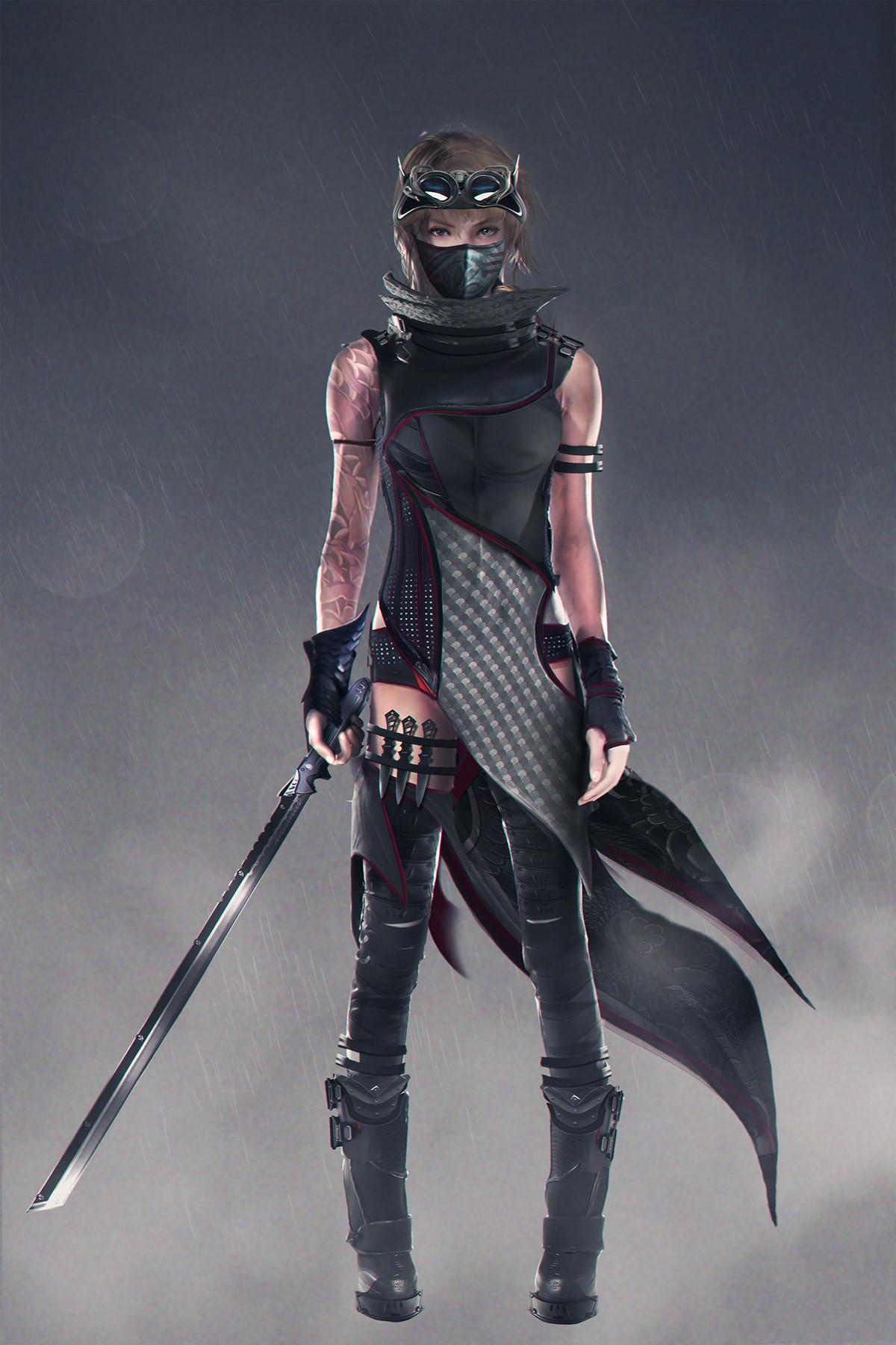 Ninja version
