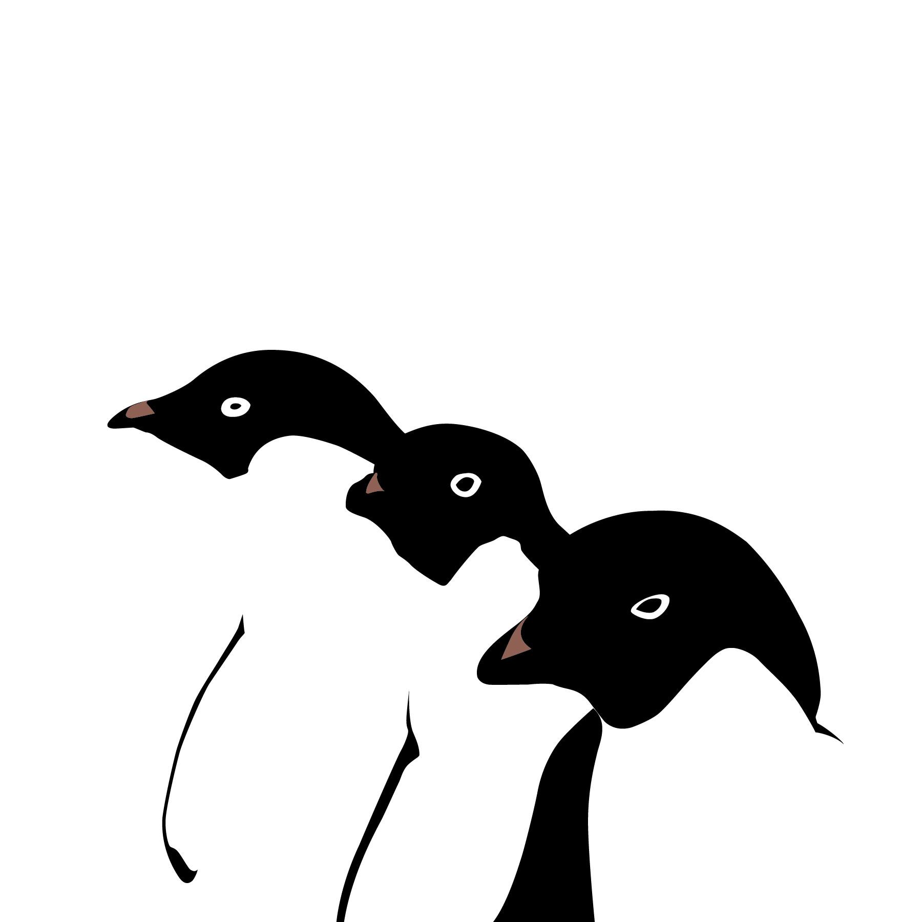 Rajesh r sawant penguins 01