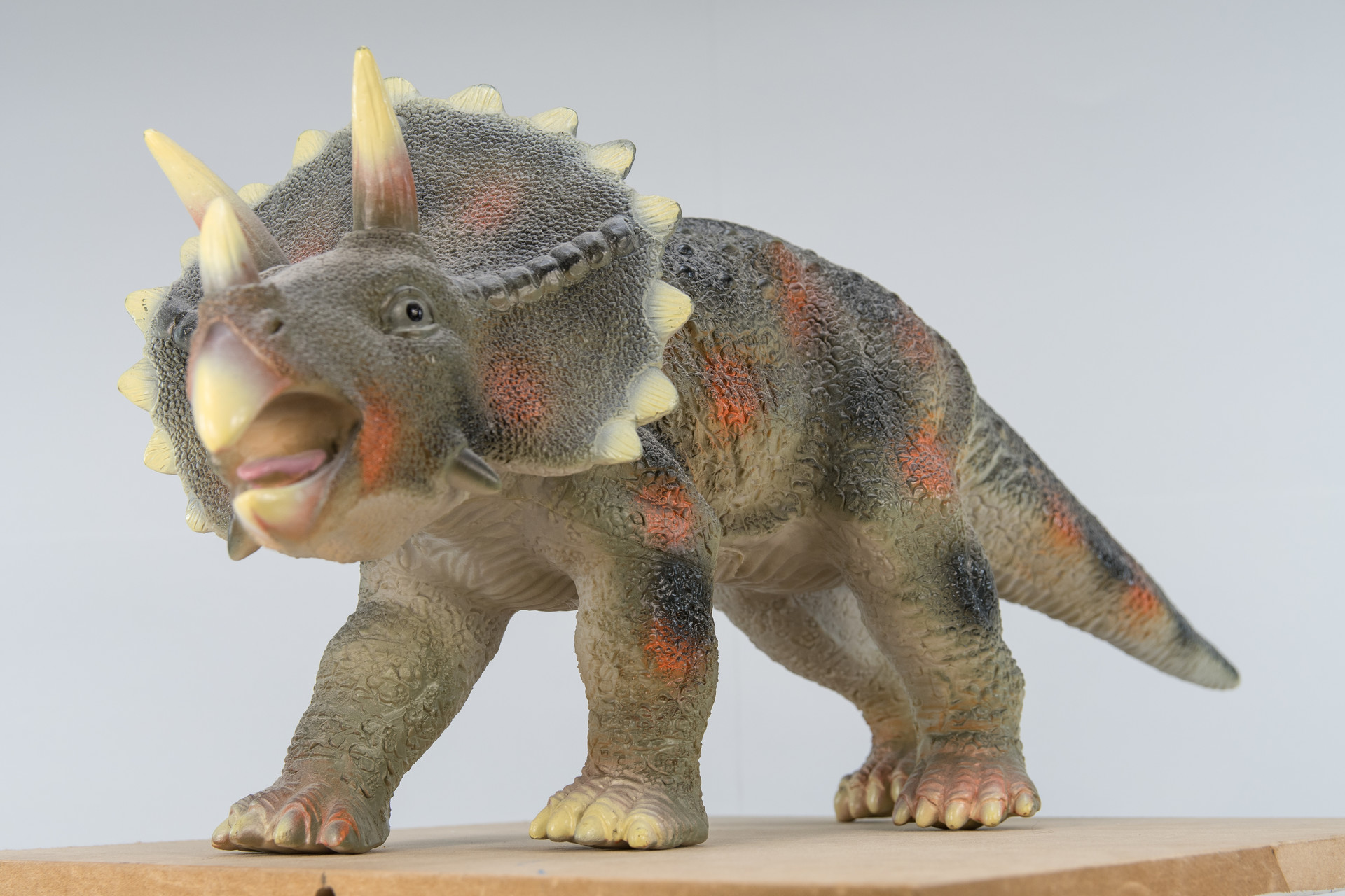 Dave riganelli triceratops 4