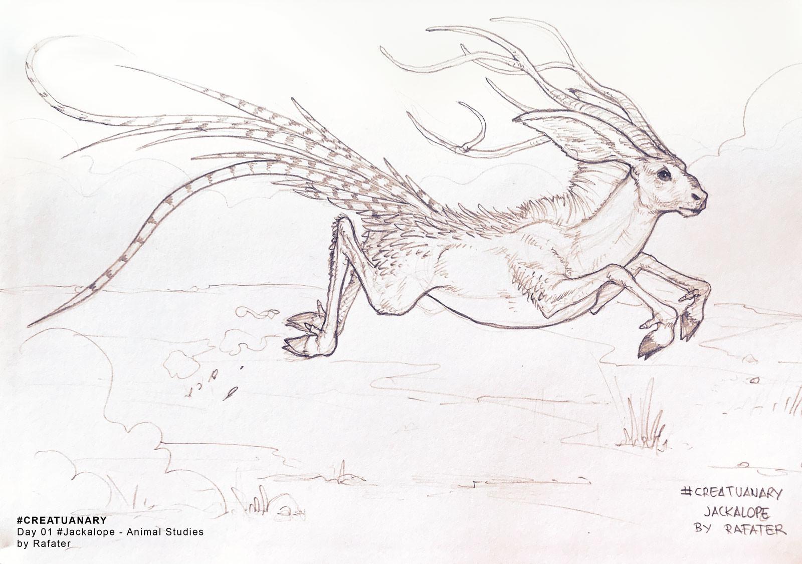 Rafael teruel creatuanary2018 day1 jackalope by rafater
