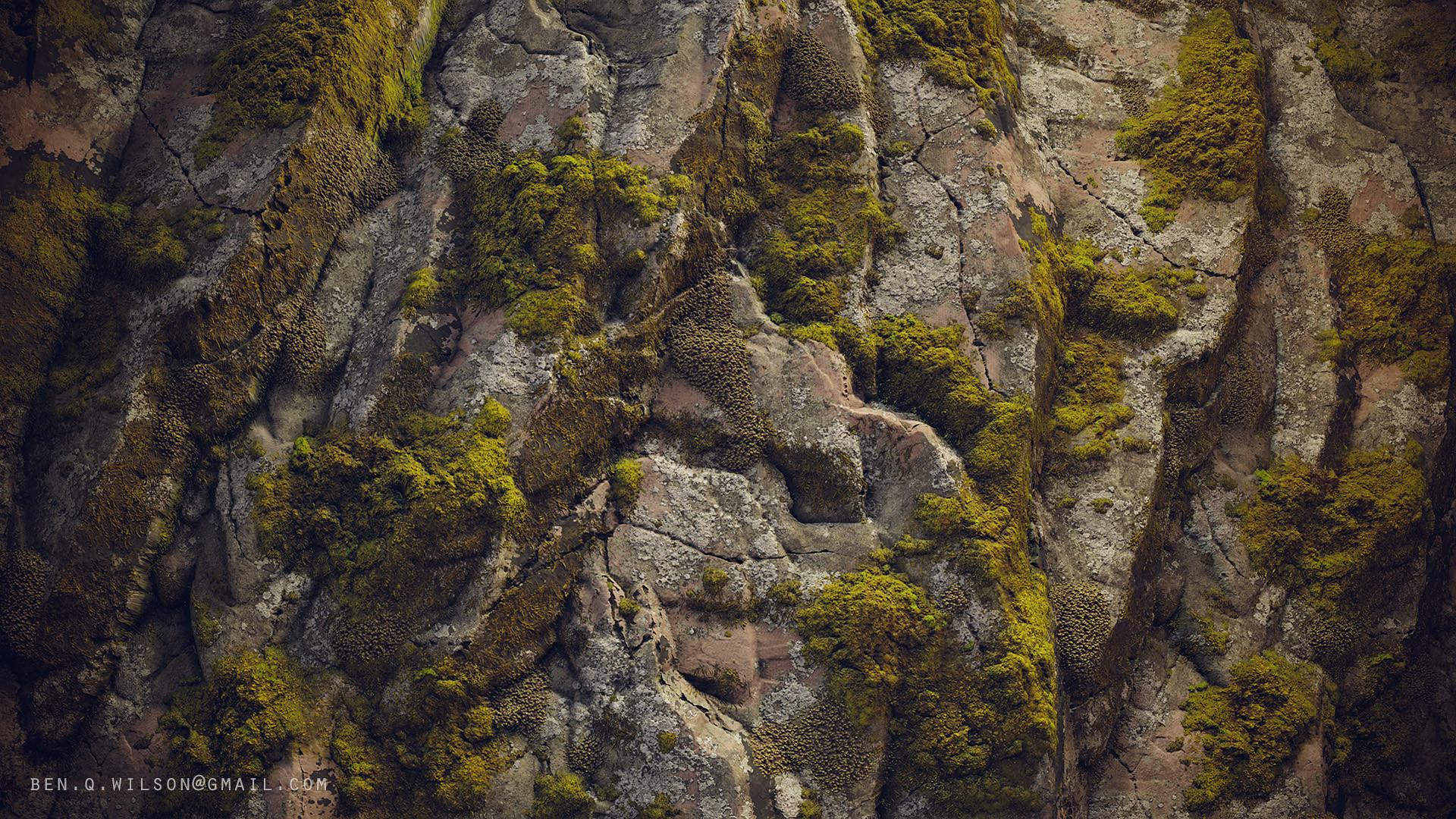 Ben wilson moss rock d
