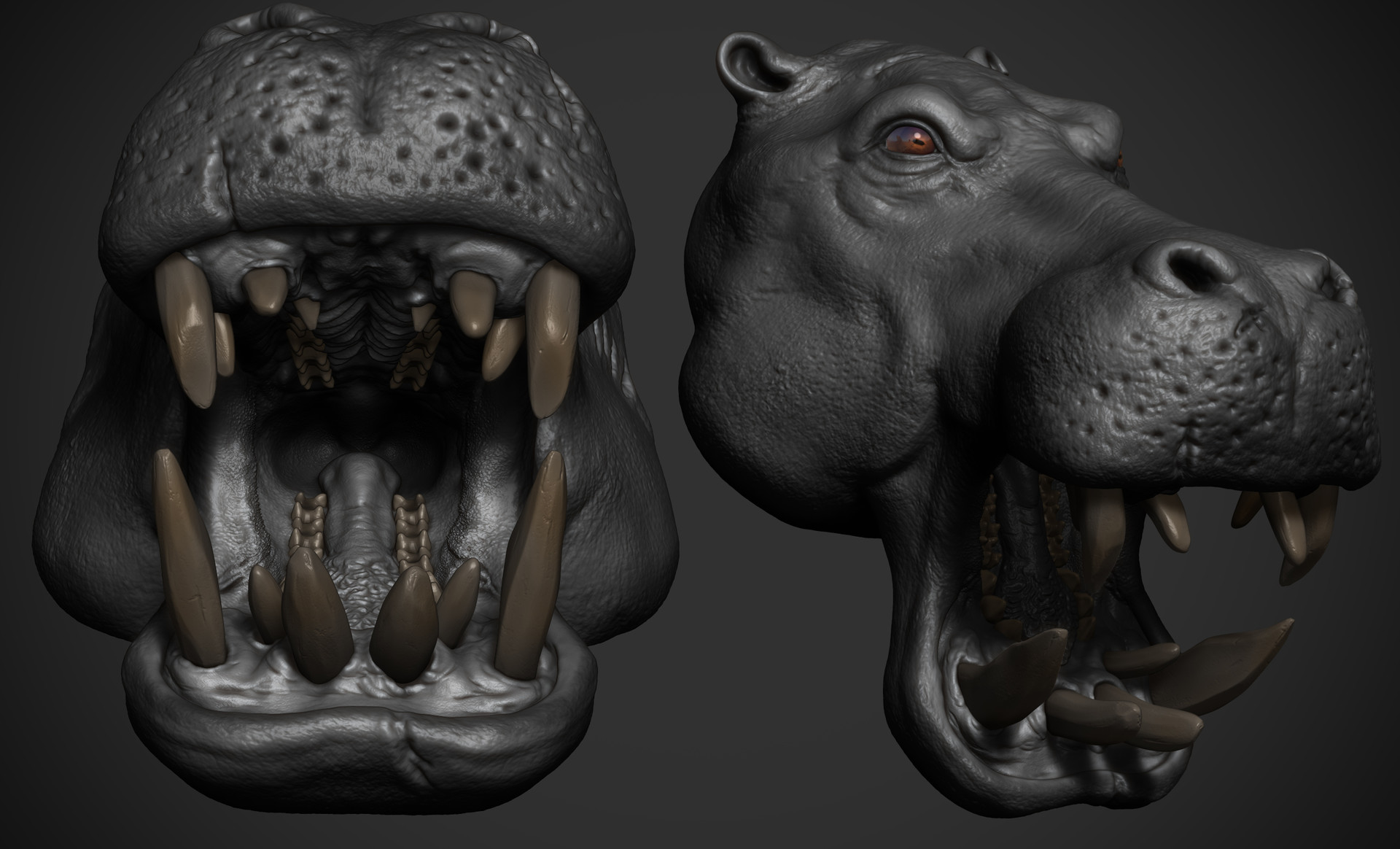 Omar chaouch hippo animal warrior omar chaouch wip 11