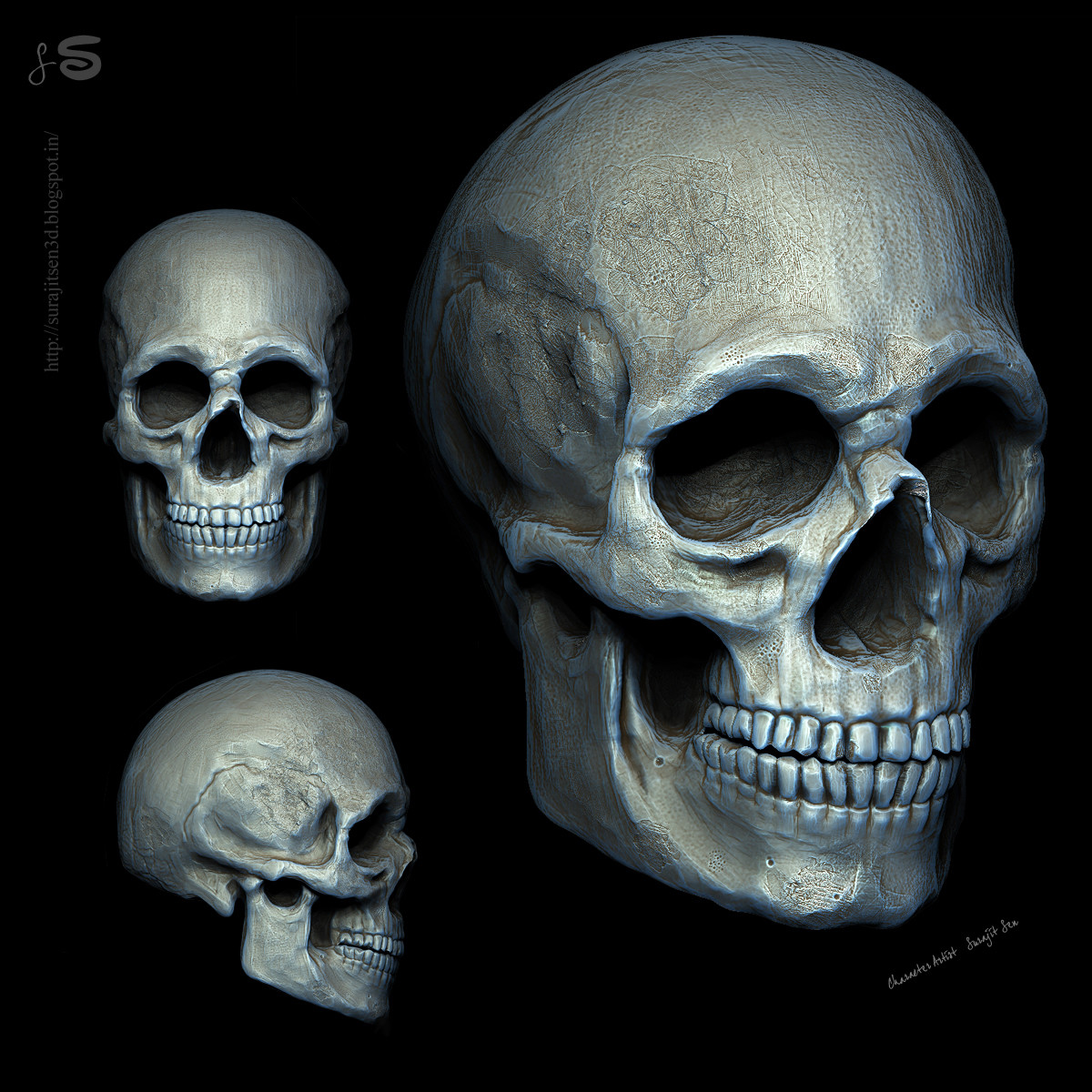 My weekend sculpt  of Human skull study. Wish to share .....:)